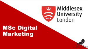 MSc Digital Marketing